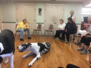 Service Dog Project, Inc.